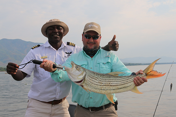 Tiger Fish Zambezi River