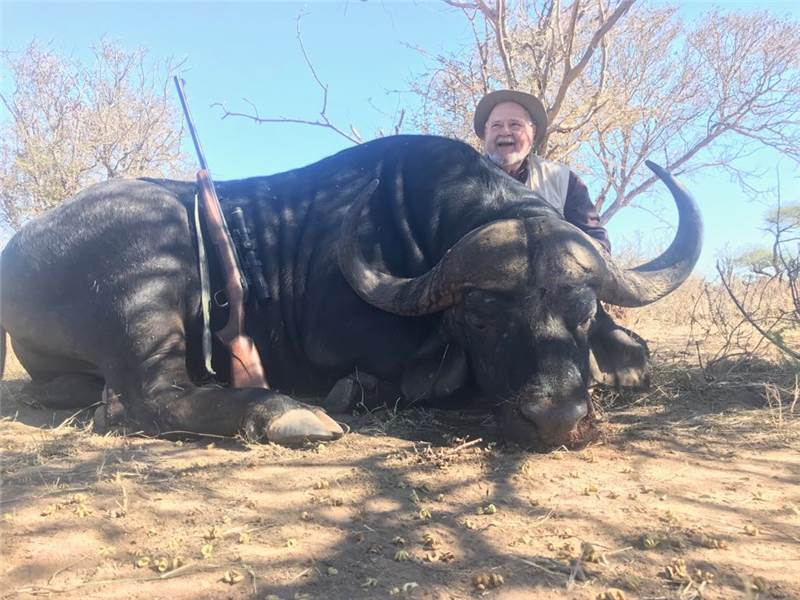 South Africa Cape Buffalo Hunt